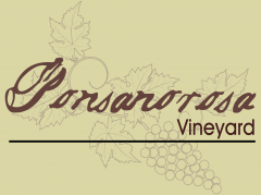 Ponsanorosa Vineyard